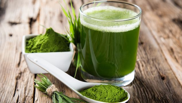 Barley-grass-juice-with-powder-and-grass-blades