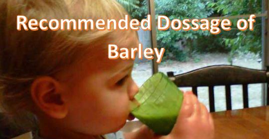 Recommended Dossage of Barley