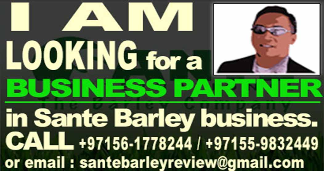 I am looking for a business partner.