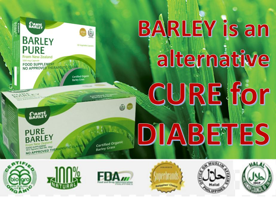 Barley is an alternative CURE for diabetes