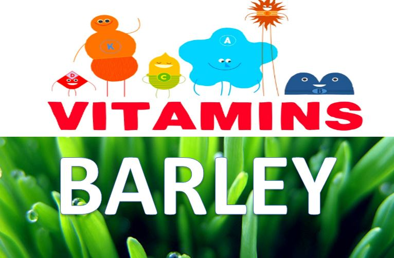 Vitamins in Barley