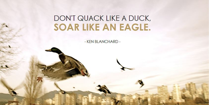Dont quack like a duck