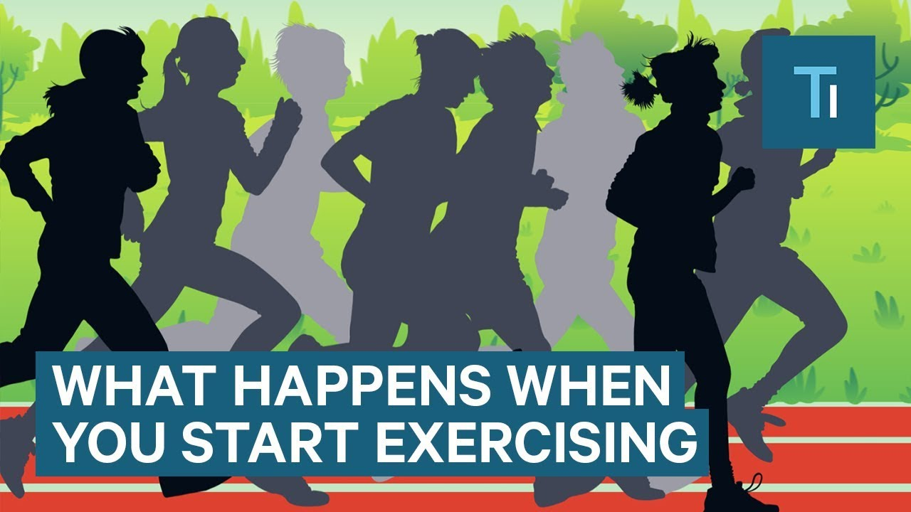 What happens when you start exercising
